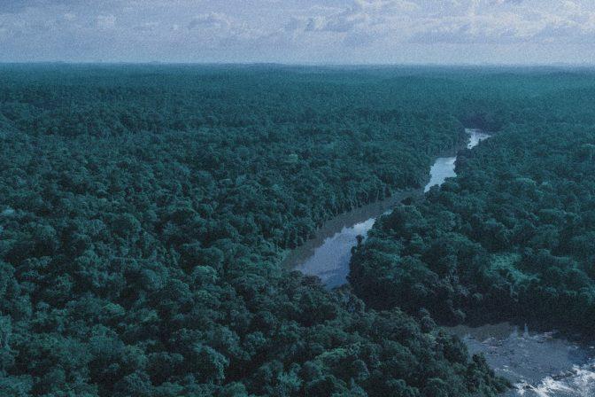 International Rights of Nature Tribunal
